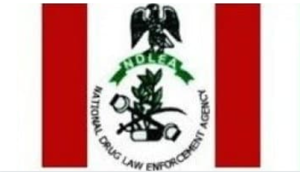 National Drug Law Enforcement Agency (NDLEA) Salary Structure