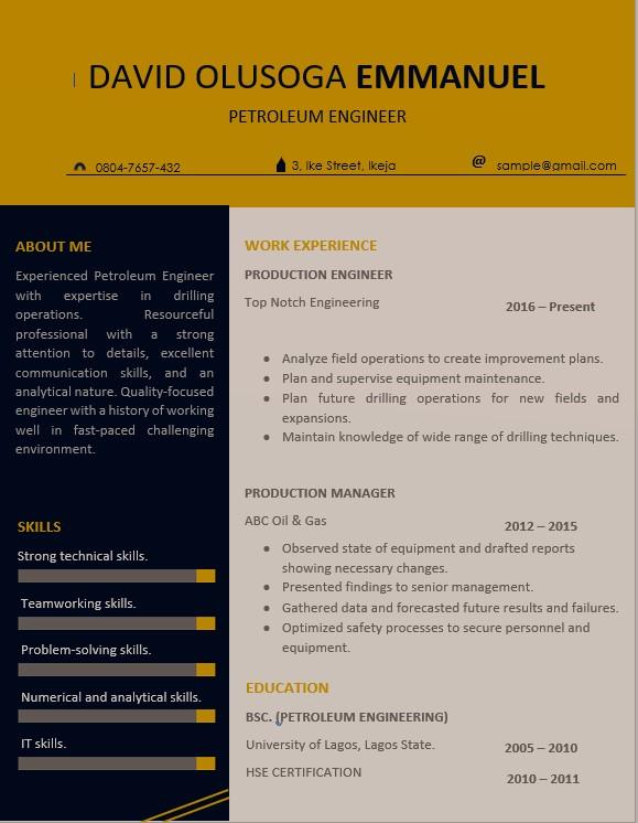 Myjobmag CV Template