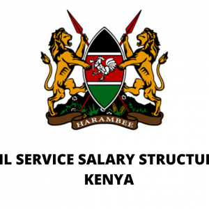 New Civil Servants' Salary Structure in Kenya