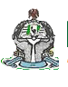National Library of Nigeria logo